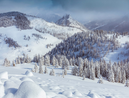 Site internet station ski – magasin ski – professionnel de la montagne